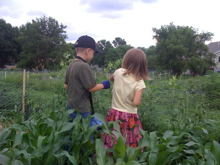 pea pickers
